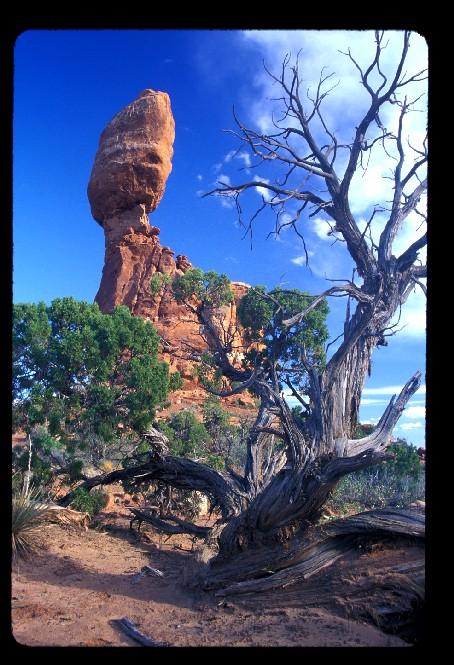 Balanced Rock at Arches Nat'l Park