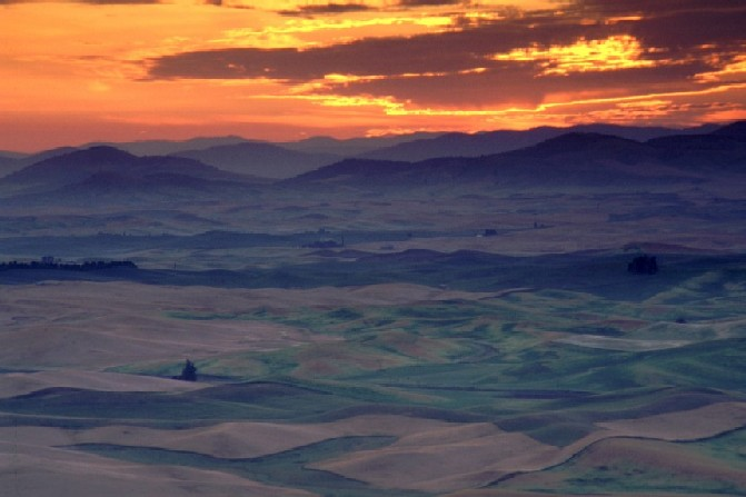 August Sunrise over Palouse Country