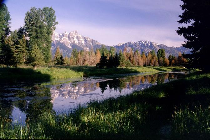 The Snake River near Schwabacher Landing, Grand Teton Nat'l Park