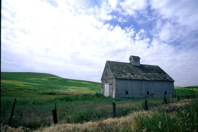 Barn near Tekoa, WA